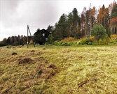 Участок в юго-западном направлении Карелии - Фото 5