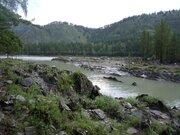 Участок 20 сот берег Катуни в рассрочку на 7 лет - Фото 1