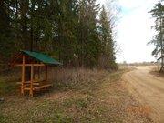 Земельный участок ИЖС, 15 соток, с коммуникациями, в д.Телеши - Фото 3