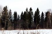 Купить земельный участок в Волоколамске