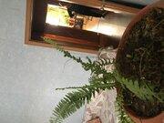 Продается квартира 67 кв.м, г. Хабаровск, ул. Краснодарская, Купить квартиру в Хабаровске по недорогой цене, ID объекта - 319205720 - Фото 2