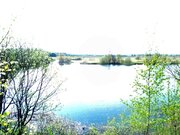 Участок в деревне 12 соток, МО, Можайский р-н, 105 км от МКАД. - Фото 5