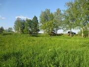 Продам земельный участок 12 сот. в д. Новые Кузьмёнки, Серп. р-на - Фото 5