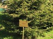 Лесной участок 10 соток под Звенигородом - Фото 1