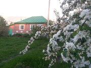 Продам дом д. Железный перебор - Фото 2