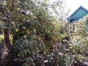 Продается дом с земельным участком, с. Воскресеновка, ул. Мира - Фото 2