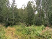 Идеальное место для любителей нетронутой природы Земельный участок - Фото 5