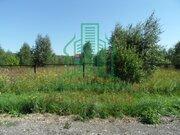 Участок в деревне, 2 км от Оки, г/о Озеры, у Нагорной дубравы - Фото 5