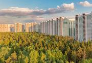 Продам 1-к квартиру, Красногорск город, бульвар Космонавтов 11 - Фото 3