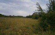 Купить земельный участок в деревне Заполье, Шимский - Фото 1