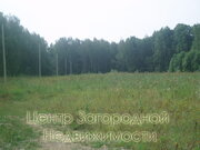 Участок, Калужское ш, 62 км от МКАД, село Папино, в садовом . - Фото 3
