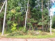 Лесной участок 6 соток дер. Копнино ИЖС - Фото 2