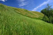 Земельный участок д. Фалилеево (Можайск) - Фото 3