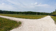 Продается участок 24 соток в ДНП Липитино Озерского района Московской - Фото 3