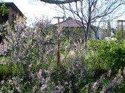 Шале для тех, кому за., Дома и коттеджи на сутки в Волгограде, ID объекта - 500046849 - Фото 10