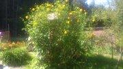 10 соток с домом вблизи Голицыно - Фото 2