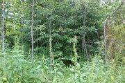 Продам лесной участок 15 соток в д. Гришино. - Фото 4