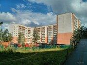 1-комнатная отличная квартира в центре Каштака, нового типа., Купить квартиру в Томске по недорогой цене, ID объекта - 320488992 - Фото 3