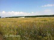 Продажа участка, Кулешовка, Липецкий район - Фото 4