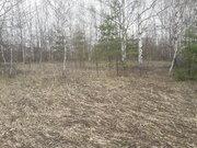 Земельный участок в д.Низкое Егорьевский район - Фото 2