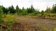 Земельный участок 0,5 Га. площадка. Северное шоссе 4 - Фото 5