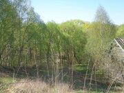 Земельный участок 31 сотка в д. Б. Руново Каширского р-на Московской . - Фото 5