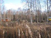 Участок 9 соток в садоводстве рядом с Разметелево - Фото 3