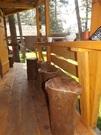 Дом в Горном Алтае, Продажа домов и коттеджей Чемал, Чемальский район, ID объекта - 503128623 - Фото 6