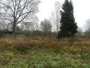 Продам земельный участок в д.Буртаки Талдомского района М.О. - Фото 4