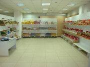 Продажа торгового помещения, Барнаул, Красноармейский пр-кт. - Фото 5