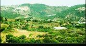 Продажа квартиры, Аланья, Анталья, Купить квартиру Аланья, Турция по недорогой цене, ID объекта - 313158706 - Фото 7