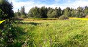 Оформленный участок в садовом товариществе в Волоколамском районе МО - Фото 5