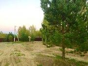 Зем. участок 11 соток у леса ИЖС - Фото 4