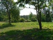 От собственника, участок на берегу реки Хотча, через 500 метров Волга - Фото 4