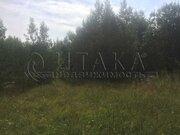 Продажа участка, Бригадное, Приозерский район - Фото 4