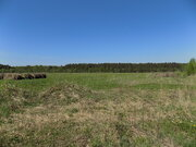 Участок ЛПХ 5,47 га у реки Волга, дер. Алексино, Калязинский р-н - Фото 2