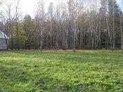 Земельный участок 40 соток в поселке Победа Мытищинского района - Фото 2