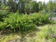 Продается ровный и сухой участок в СНТ Фосфорит д. Тикопись - Фото 4
