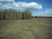 Продажа участка, Коновалова, Тайшетский район, - - Фото 5