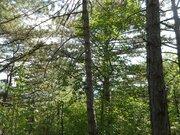 Продажа земельного участка в п. Краснокаменка 7 соток в леса. - Фото 2