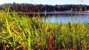 Недорогая двушка у реки и соснового бора, Аренда квартир в Конаково, ID объекта - 332247750 - Фото 8