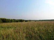 3,9 Га под лпх в д.Тельвяково - 95 км Щёлковское шоссе - Фото 1