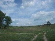 Продам участок в селе Панино 50 соток - Фото 5
