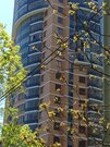 Квартира в престижном жилом комплексе - Фото 5