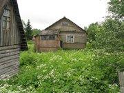 Дом в деревне Линево Псковской области - Фото 3