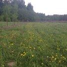 Заповедный уголок, деревня Шувалово - Фото 1