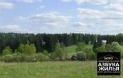 Земельный участок в с. Снегирево - Фото 1