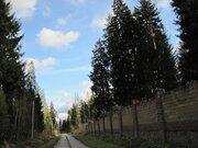 2 750 000 Руб., Зеленая роща. 12 (24) соток. 35 от МКАД., Земельные участки в Голицыно, ID объекта - 201101056 - Фото 3