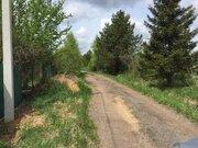 Лесной массив 27 Га с вековыми елями, соснами и березами в деревне - Фото 2