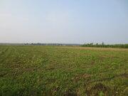 Земельный участок 10 сот. в д. Б. Грызлово для ЛПХ. Серпуховской р-он - Фото 1